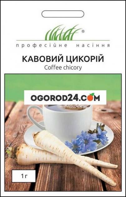 Семена Кофейный цикорий