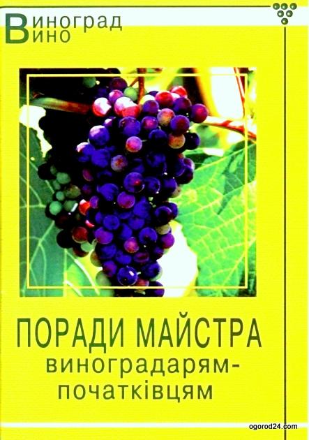Советы мастера виноградарям