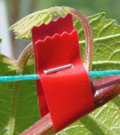 Степлер для подвязки винограда, овощей и цветов BZ-A
