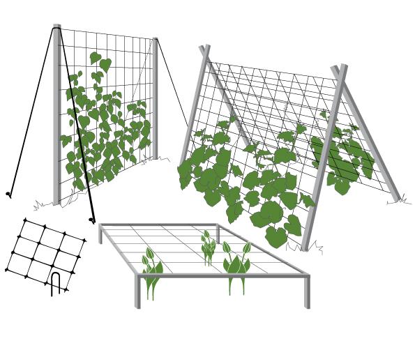 Шпалерная сетка, светло-зеленая, 1.7 на 10 м.
