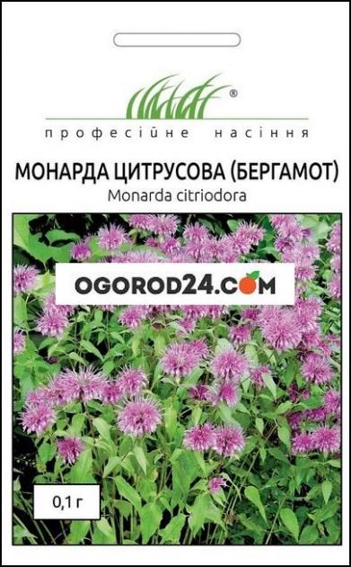 Семена Монарда цитрусового (бергамот)
