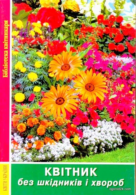 Цветы без вредителей и болезней