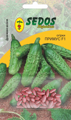 Семена огурца Примус F1