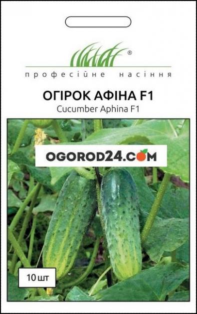 Семена огурца Афина F1